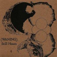 (waning)-Still Hours