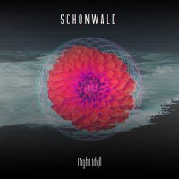 Schonwald-Night Idyll