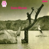 Tonton Macoute — Tonton Macoute [Vinyl Rip 24/192] (1971)  Lossless