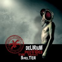 A Losing Season — Delirium Provides The Safest Shelter (2010)