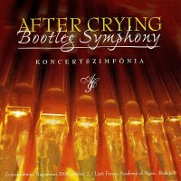 After Crying-Bootleg Symphony