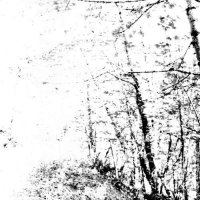 Agalloch-The White