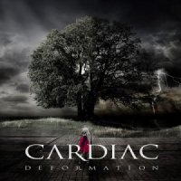 Cardiac-Deformation