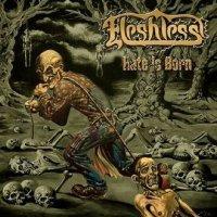 Fleshless-Hate Is Born