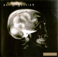 David Sylvian-Godman [Enhanced CDS]