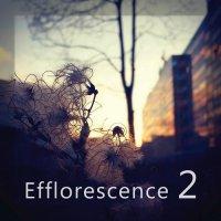 VA — Efflorescence 2 (2016)