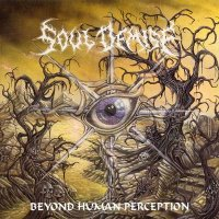 Soul Demise-Beyond Human Perception