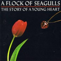 A Flock Of Seagulls-The Story Of A Young Heart