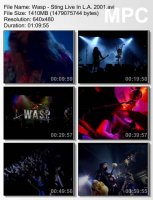 W.A.S.P.-The Sting (Live At The Key Club L.A.) DVDRip