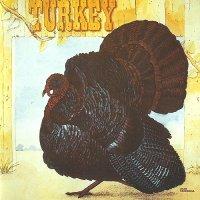 Wild Turkey-Turkey