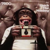 VA-Prog P38: Shock The Monkey