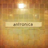 Anton Barbeau-Antronica