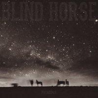 Blind Horse-Patagonia