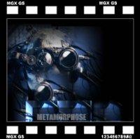 Dvation-Metamorphose