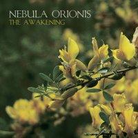 Nebula Orionis-The Awakening