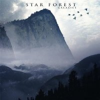 Star Forest-Galaxies