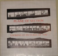 Plane of Section-Looking at Pictures of You