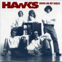 Hawks-Down On My Knees