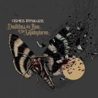 Ashes Emblaze-Downfall And Rise Of The Lepidopteran
