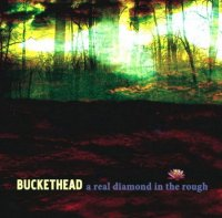 Buckethead-A Real Diamond In The Rough