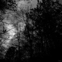 Abysmal Growls Of Despair-Crypt Of Demons