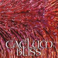 Caelum Bliss — Caelum Bliss (1995)