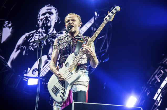 Басист Red Hot Chili Peppers выпустит книгу мемуаров
