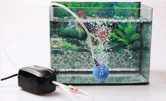 Где купить бесшумный компрессор для аквариума?